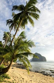 Philippines, Palawan, El Nido, Las Cabanas beach, palm beach - GEMF000039