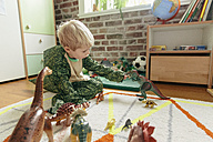 Little boy wearing dinosaur costume playing with toy dinosaurs - MFF001489