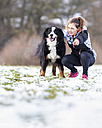 Germany, young woman with her Saint Bernard on snow-covered meadow - STSF000696