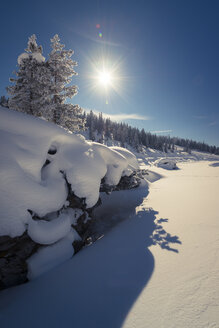 Austria, Muehlbach am Hochkoenig, Winter landscape against the sun - STCF000088