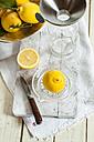 Fresh lemons in  squeezer for making lemonade - SBDF001690