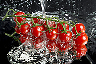 Cherry tomatoes being washed on a mirror face - CSTF000865