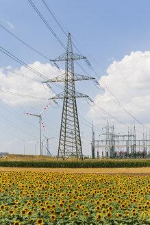 Austria, Burgenland, sunflower field and wind farm Moenchhof-Halbturn - SIEF006493