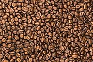 Coffee beans - EJWF000674