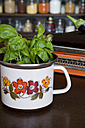 Basil plant in an old Seventies pot - GIS000014