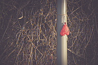 Deflated heart-shaped balloon hanging on a pole - CHP000072