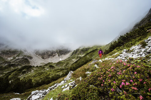 Austria, Altenmarkt-Zauchensee, young woman hiking - HHF005121