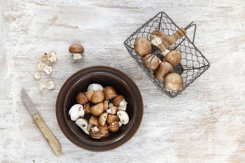Fresh mushrooms - EVGF001296