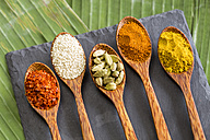 Wooden spoons with different spices - JUNF000242