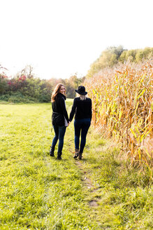 Lesbian couple walking hand in hand on a meadow - DAWF000297