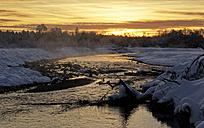 Germany, Bavaria, morning mood at the Isar floodplains - LHF000436