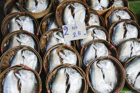 Thailand, fish on market - STDF000151