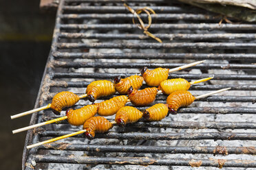 Ecuador, Puerto Francisco de Orellana, grilled larva of trunk beetle - FOF007744