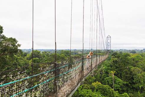 Ecuador, Amazon River region, tourist on suspension bridge above rain forest - FOF007768