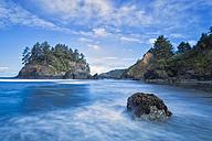 USA, California, Humboldt County, Eureka, Trinidad State Beach, Pewetole Island - FOF007790
