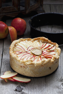 Baked apple pie on wood - CSF024775