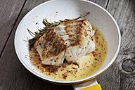 Fried coalfish fillet - CSF024837