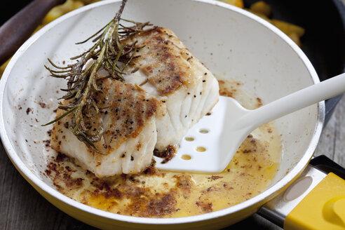 Fried coalfish fillet - CSF024840