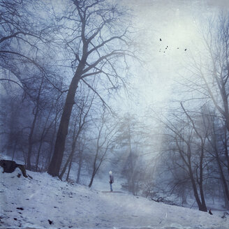 Germany, near Wuppertal, man standing on forest track in winter, light beams and birds, textured effect - DWI000445