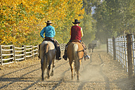 USA, Wyoming, cowboy and cowgirl riding horses - RUEF001573