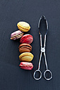 Six different macarons and a pastry tong on slate - CSF024892