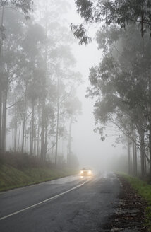 Spain, Galicia, Coruna, driving car on country road in the fog - RAEF000078