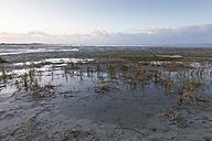 Germany, Bensersiel, coastal landscape - WIF001575
