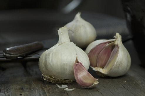 Garlic bulbs and garlic clove - ASF005505