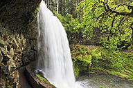 USA, Oregon, Silver Falls State Park, Lower South Falls - FOF007838