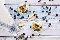 Yogurt with granola and blueberries - LVF003056