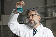 Scientist in laboratory examining liquid in Erlenmeyer flask - RBF002537
