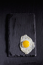 Fried quail egg on slate - CSF025001