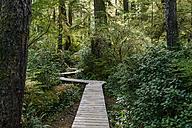 Canada, British Columbia, Vancouver Island, Tofino, Schooner Cove Hiking Trail - KEBF000023