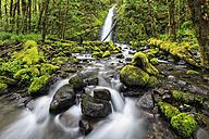 USA, Oregon, Hood River County, Columbia River Gorge, Ruckel Creek Falls - FOF007873