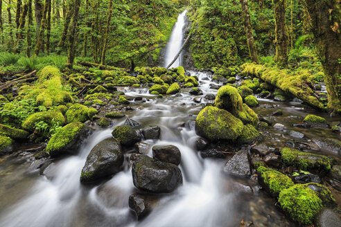 USA, Oregon, Hood River County, Columbia River Gorge, Ruckel Creek Falls - FOF007873