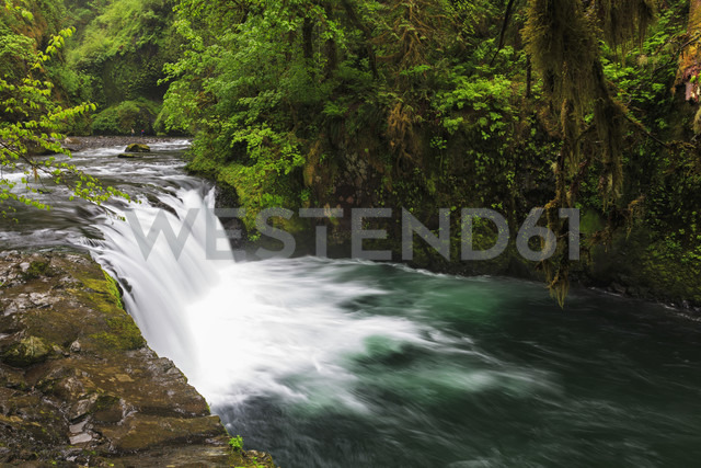 USA, Oregon, Hood River County, Columbia River Gorge, Lower Punch Bowl Falls - FOF007880 - Fotofeeling/Westend61