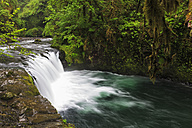 USA, Oregon, Hood River County, Columbia River Gorge, Lower Punch Bowl Falls - FOF007880