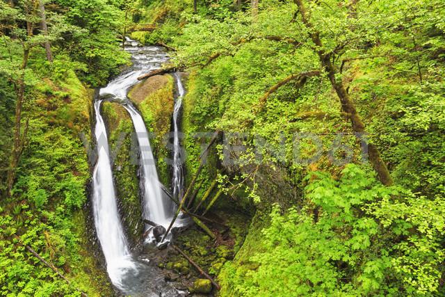 USA, Oregon, Columbia River Gorge, Multnomah County, Triple Falls - FOF007912 - Fotofeeling/Westend61