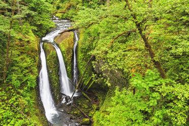 USA, Oregon, Columbia River Gorge, Multnomah County, Triple Falls - FOF007912