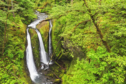 USA, Oregon, Columbia River Gorge, Multnomah County, Triple Falls - FOF007912