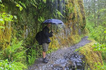 USA, Oregon, Columbia River Gorge, Eagle Creek Trail, Tourist with umbrella - FOF007892
