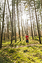 Young man jogging on forest path - UUF003717