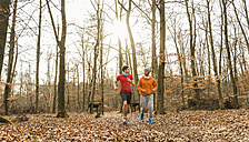 Two young men jogging in forest - UUF003742