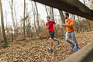 Two young men jogging in forest - UUF003739