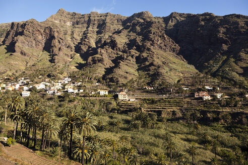 Spain, Canary Islands, La Gomera, Valle Gran Rey, View to mountain village and palm trees and terrace fields - PCF000121
