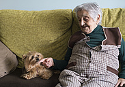 Old woman petting a yorkshire terrier - RAEF000118