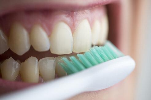 Toothbrush on teeth - CHPF000129