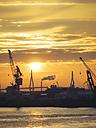 Germany, Hamburg, Silhouettes of harbour cranes at sunset, Koehlbrand bridge in the background - KRPF001407