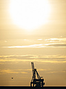 Germany, Hamburg, Port of Hamburg, Harbour cranes and flying bird at sunset - KRPF001421