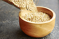 Hemp seeds being poured into a wooden bowl - HAWF000763